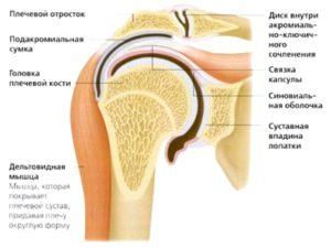 Причины развития болезни артроза плечевого сустава