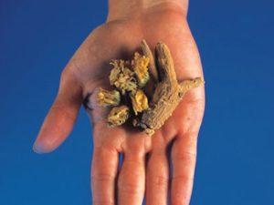 Советы по народной медицине при артрите пальцев рук